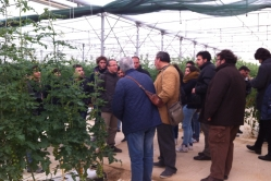 E8 - 2014-01-31_corso specializzazione 001