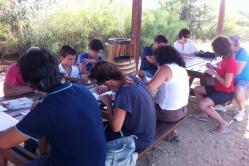 E7 - Visita guidata Life Leopoldia - 7 agosto 2014