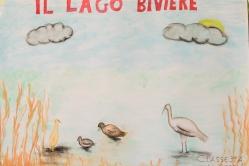 Convegno Conclusivo Progetto Leopoldia Life+. Pannelli alunni delle scuole partecipanti.